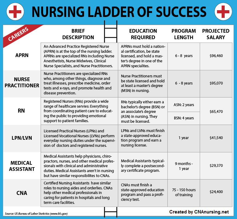 the degreed nurse | student caring - helping parents, professors, Sphenoid